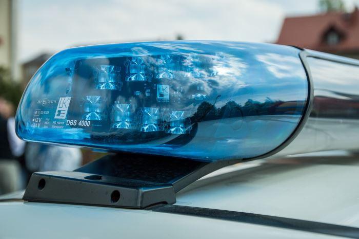Policja Gdynia: 51-latek zatrzymany za kradzież na działkach